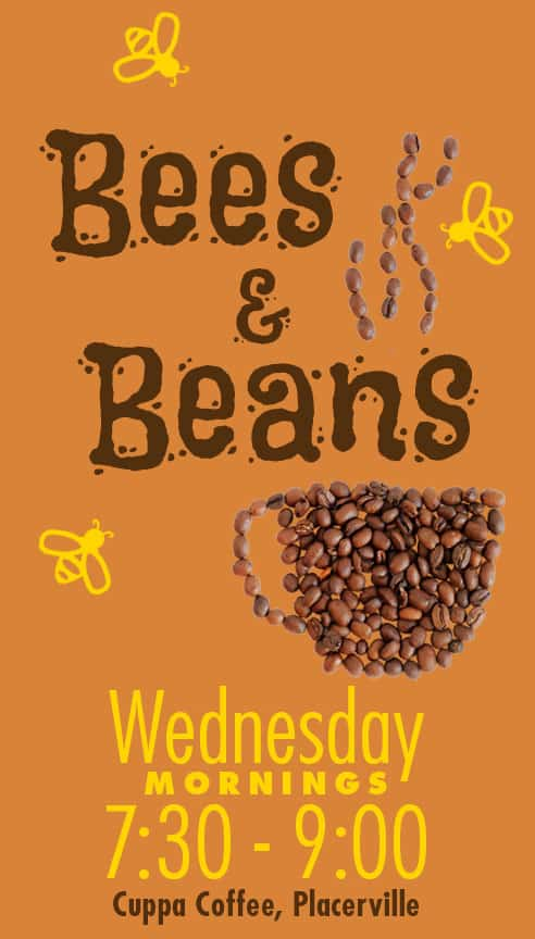 Bees Beans